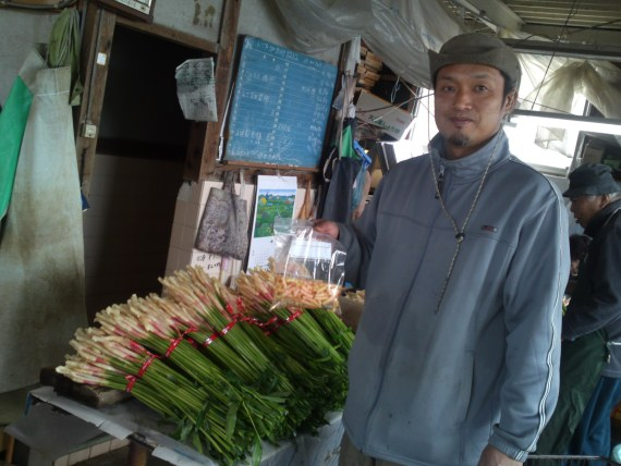 Shizuoka Agricultural Products: Stick Ginger at Hatada Garden
