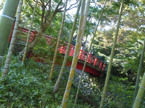 Izu Peninsula: Strolling through Shuzenji Hot Springs Resort