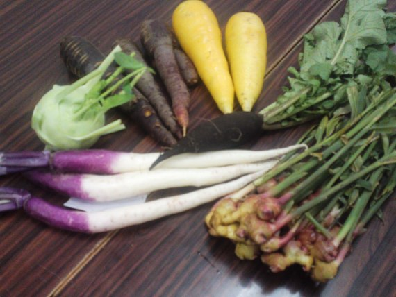 Organic Vegetables from Shizuoka Prefecture with Aritsune Akutsu!