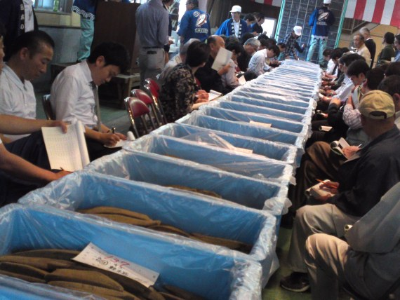 Katsuo Bushi: Annual Auctions of Dried Bonito in Yaizu City!