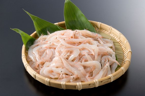 Japanese Crustacean Species 1: Shiro Ebi-White Shrimp