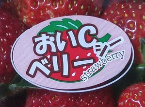 OiC strawberry 2